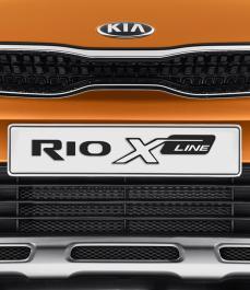 Захисна сітка радіатора RIO  X-Line